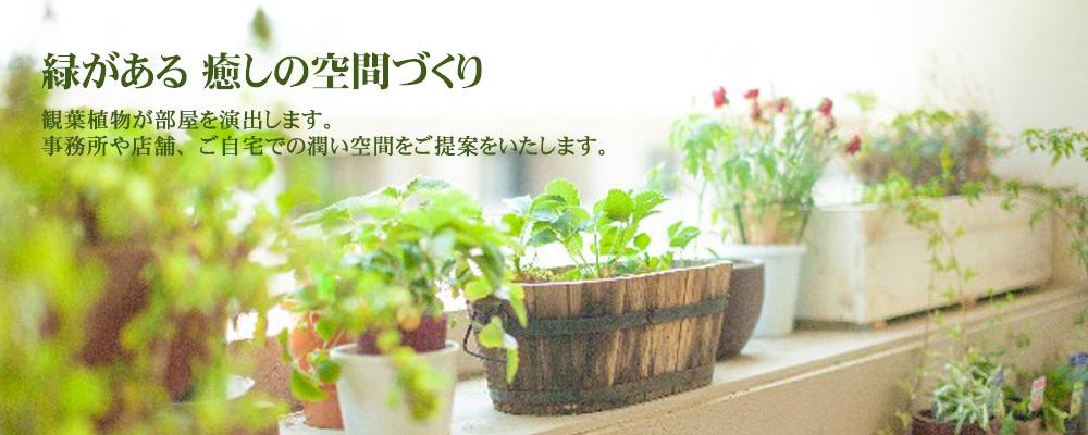 観葉植物リース部門